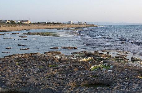 צילום: אלמוג ליטמון נימי לנגר